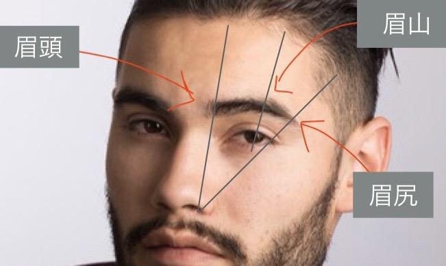 眉毛の解説